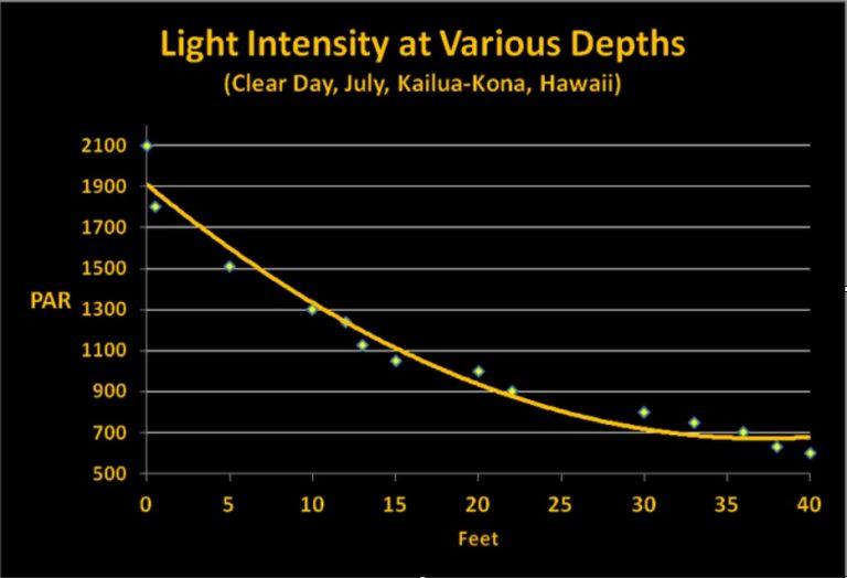 Light-intensty-PAR-at-veriuos-depth